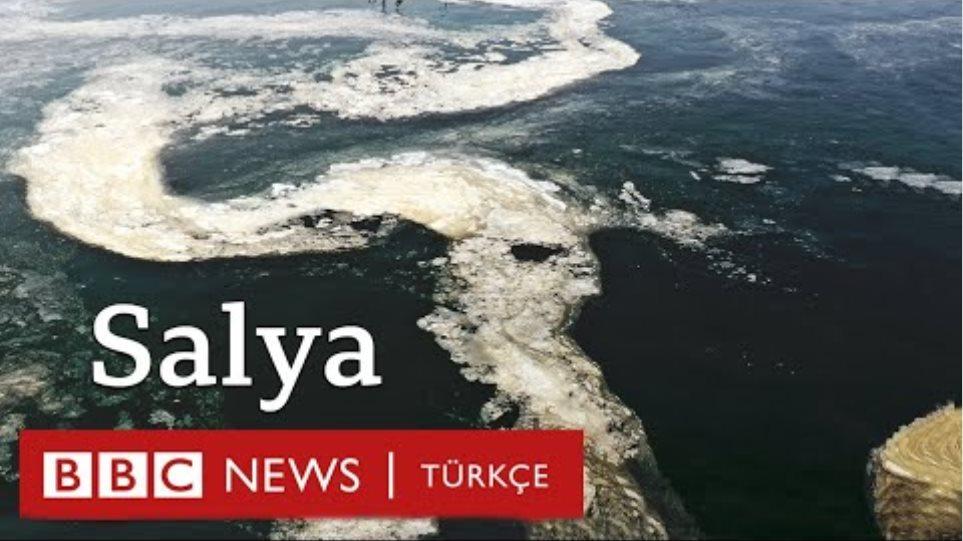 """Marmara Denizi'nde salya: """"Müsilajın suyun altındaki sonuçlarından korkuyoruz"""""""